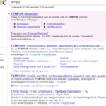 adwords_tempur